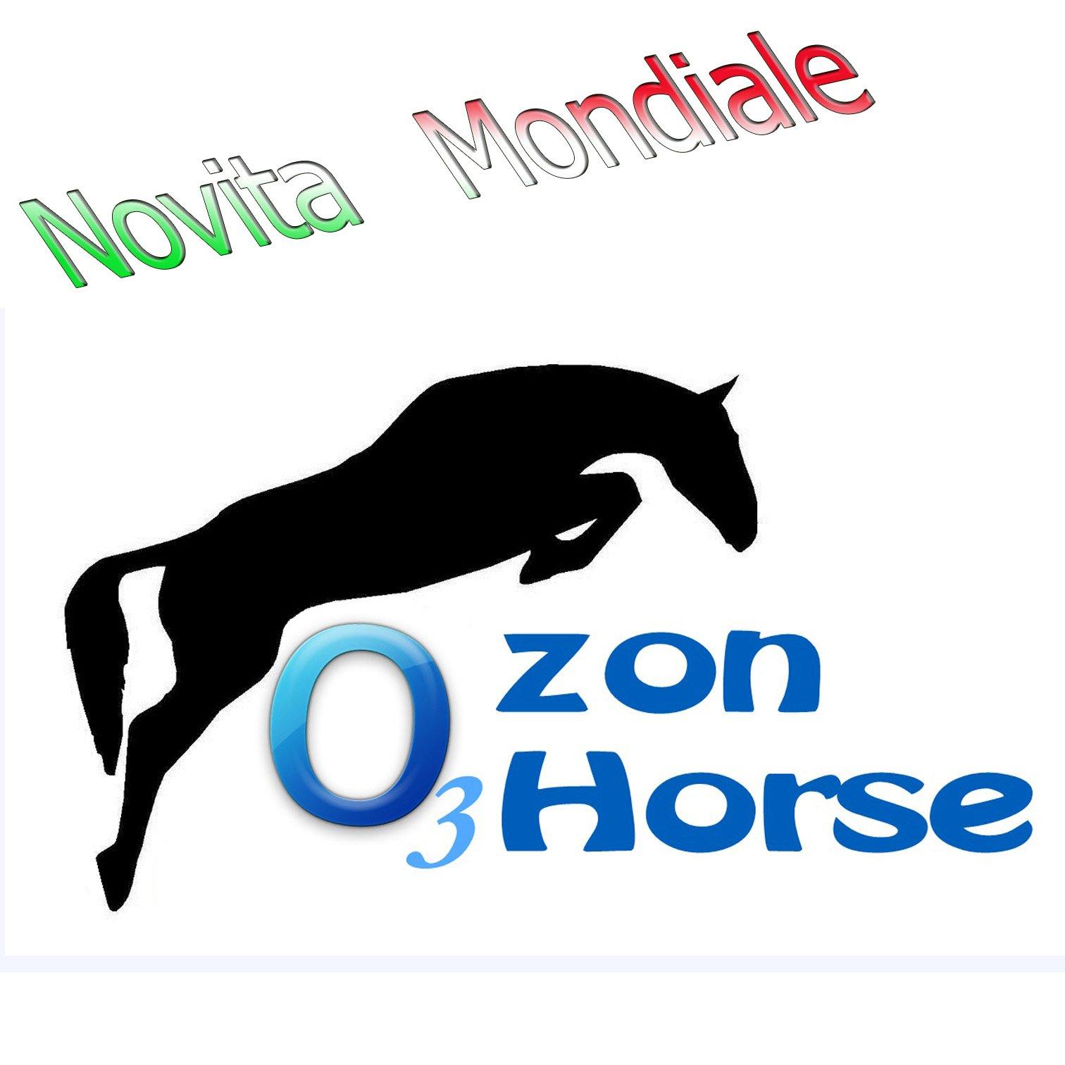 Idroterapia Ozonizzata Horse System