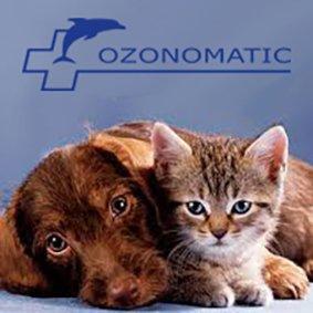 Idroterapia Ozonizzata Arti Inferiori